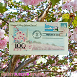 Cherry Blossom 100 Year First Day of Issue Envelope