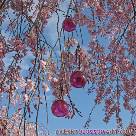 Cherry Blossom Glass Balls