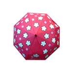 Mini Pop Up Festival Umbrella