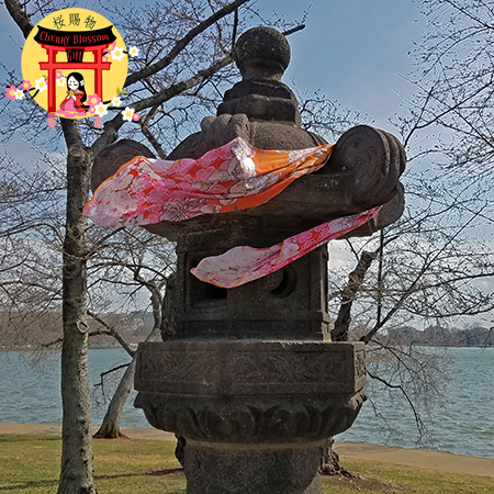 Ladies Sunset Orange and Pink Pashmina Cherry Blossom Scarf