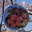 The Official 2016 National Cherry Blossom Festival Ornament